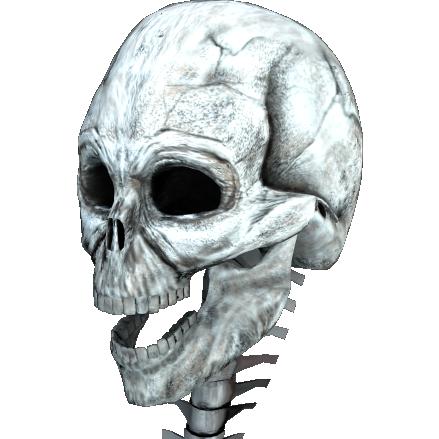 顎の歪みイラスト